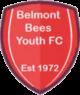 Belmont Bees